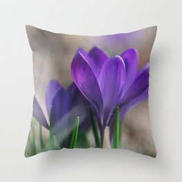 Flower Photography by Aaron Burden Throw Pillow