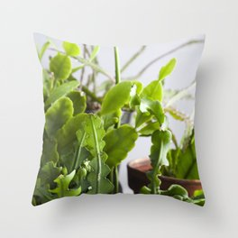 Jungle Cactus  |  The Houseplant Collection Throw Pillow