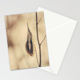 Exposed Stationery Cards