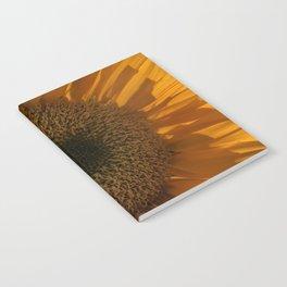 Trance Notebook