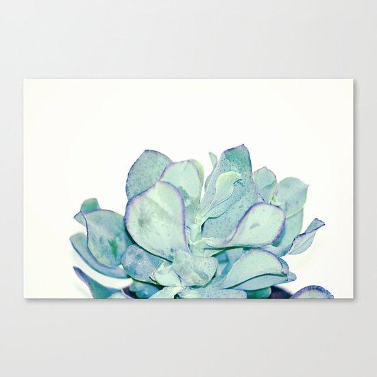 #166 Canvas Print