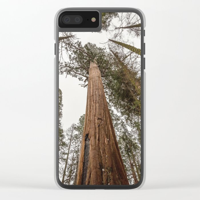 Sequoia Stretch - Nature Photography Clear iPhone Case