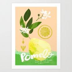 Botanical Diagram: Pomelo Art Print