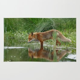 Fox Reflected in Pond Rug