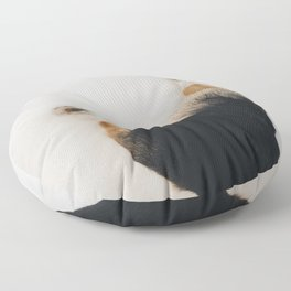 Corgi Drumsticks Floor Pillow