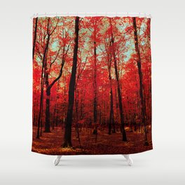 True North Shower Curtain