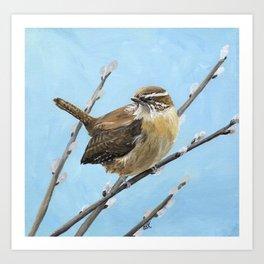Brown House Wren Bird Art Art Print