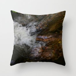 River Ness Inverness Throw Pillow