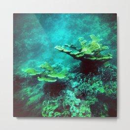 Under the Sea Coral Reef Caribbean Metal Print