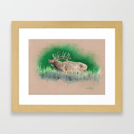Elk drawing Framed Art Print