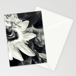 Passionflower - Tropical Orchid Floral black and white photograph Stationery Cards