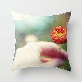 Everlasting Strawflower Throw Pillow
