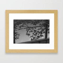 Chuson-ji, Japan. Framed Art Print