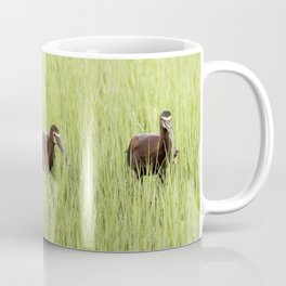 Three White-Faced Ibis Coffee Mug