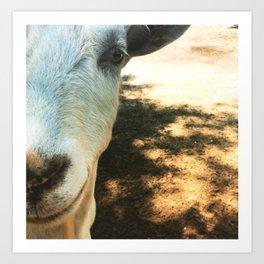 Goat Friend Art Print