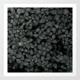 Black and White Fitonia Art Print