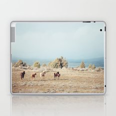 Oregon Wilderness Horses Laptop & iPad Skin