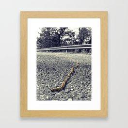 Processionarie Framed Art Print