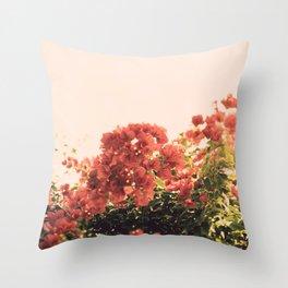 Bouganvillea Morning #3 Throw Pillow