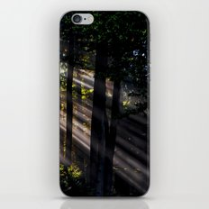 Pathless Woods #spring #forest iPhone & iPod Skin