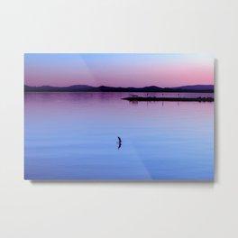 Water landing at sunset Metal Print