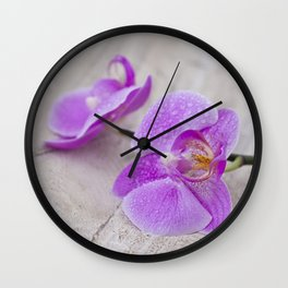 pink orchid flower close up water drops Wall Clock