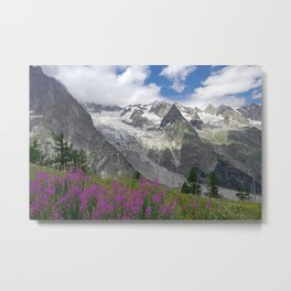 Flowering Meadows Snowy Mountains Summer Alpine Landscape Metal Print