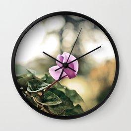 Ciclamino Wall Clock