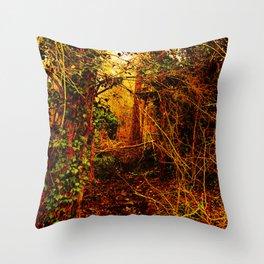 Winter forest stream Throw Pillow