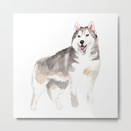 Husky my Love Metal Print