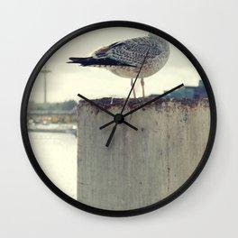 Möwe Kiel Wall Clock