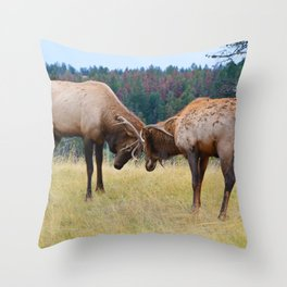 Bull elk in the rut season in Jasper National Park Throw Pillow