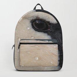 Mute Swan in Winter - CloseUp Backpack