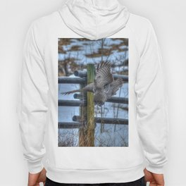 Dive, Dive, Dive! - Great Grey Owl Hunting Hoody