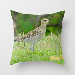 Pacific Golden Plover Throw Pillow