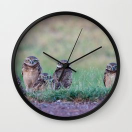 Baby Burrowing Owls Wall Clock