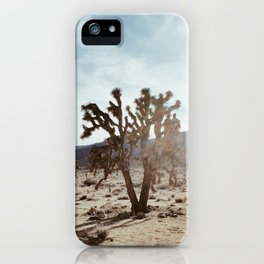 Joshua Tree in Joshua Tree National Park iPhone Case
