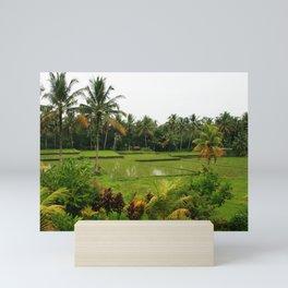 Bali - Rice Fields Mini Art Print