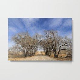 Tree Archway Metal Print