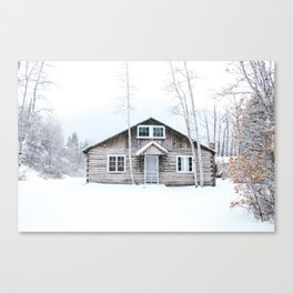 Aspen in the Winter Canvas Print