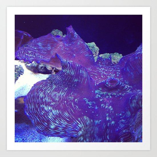 Petal Parasol Art Print