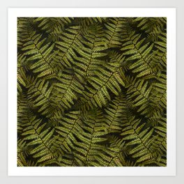 Among the ferns in the forest (military green) Kunstdrucke