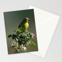 Goldfinch Flower Stationery Cards