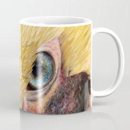 Pelican Staredown Coffee Mug