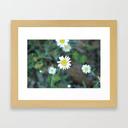 Remember Summer? Framed Art Print