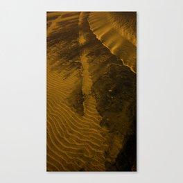 Beach Designs Canvas Print