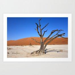 Skeleton tree in Namibia Art Print
