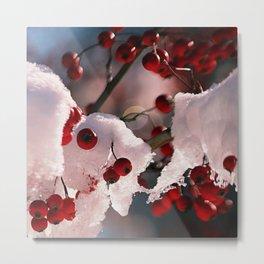 Icy Berries Metal Print