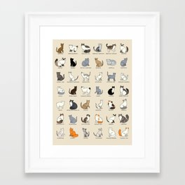Cat Breeds Framed Art Print