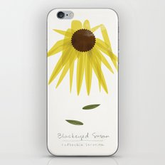 Blackeyed Susan Modern Botanical iPhone & iPod Skin